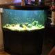 Akvarie 340 liter inkl. tillbehör kompl. utan fisk